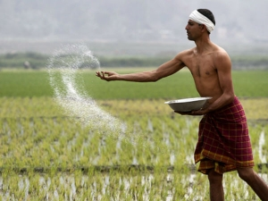 Farmers Expectation Agriculture Loan Waiver Next Year Election