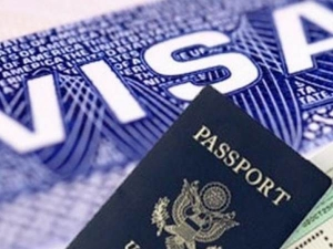Percent Indian It Company Employees Visa Rejected Work America