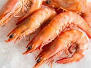 Prawns Export Increases At 21 Per Cent