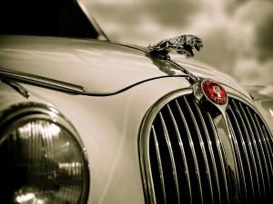 Sales Luxury Cars Set Cross 30 000 Units