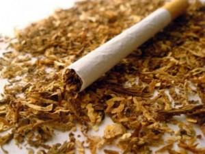 Hike Vat On Cigarettes Harsh Vardhan