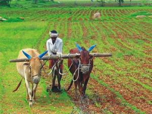Crore The Debt Burden The State The Year 2018 Tamilnadu Budget