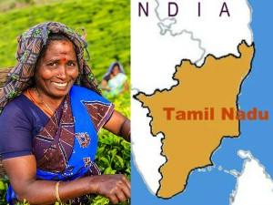 Highest Number Women Entrepreneurs Tn Kerala
