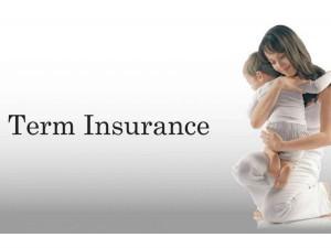 How Choose Term Insurance Plan