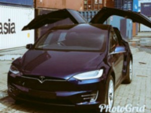 India S First Tesla Car Imported Top Businessman