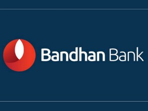 Bandhan Bank Launch India S Biggest Ever Bank Ipo On March