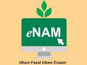What Is Enam