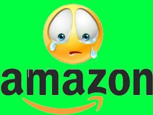 Dropout Dupes Amazon Rs 1 3 Crore Karnataka