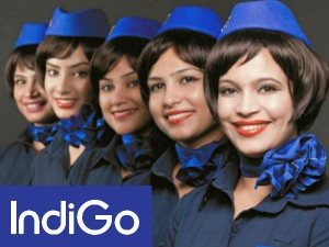 Indigo Cancels 42 Flights Today