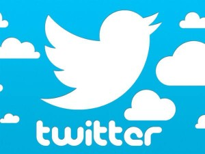New Business Twitter 1 000 Follwers Just Rs
