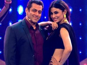Salman Khan Convicted Blackbuck Killing Salman Khan S Property Worth Rs 2000 Crore
