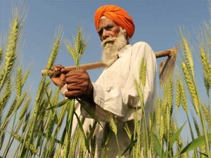 There Is No Shortage Farmers Nabard