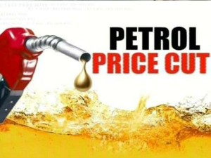 Soon Petrol Price Will Come Down 10 Methanol Usage Niti Aayog