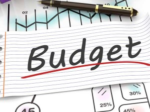 Mutual Fund Companies Are Not Happy With This Interim Budget