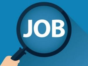 Cii Job Survey Msme 3 32 Lakh Jobs Only Created Last 4 Year