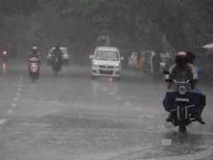 Monsoons To Be Well Distributed In India