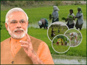 Pm Kissan Scheme Rs 12305 Crore Disbursed Till Date
