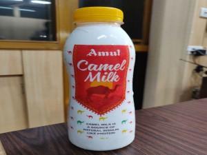 Amul Introduces Camel Milk In 200 Ml Bottle