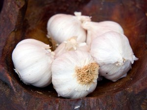 Kodaikanal S Mountain Garlic Gets Geographical Indication