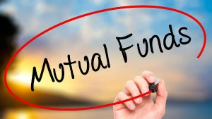 Mutual Funds Dividend Yield Thematic Funds Are Giving Around 6 Percent Return In 5 Years