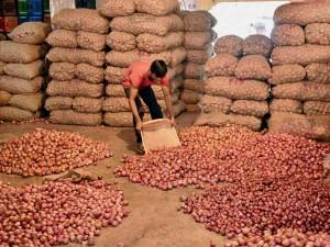 Center Slap Export Ban On Onion