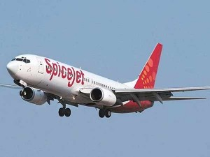 Spicejet To Launch 46 New Domestic Flights Check Routes