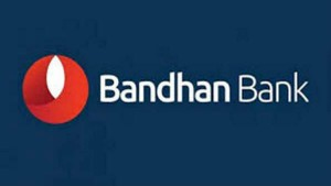 Bandhan Bank Shares Tumbled 9 In The Morning Session