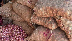 Govt Official Says 1 000 Tonne Onion Import Expected By This Month End