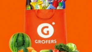 Grofers Report Loss Rs 448 Crores
