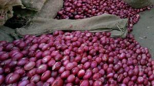 Onion Wpi Inflation Is 172 Percent