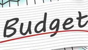 Budget 2020 Challenges To Central Government