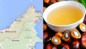 India Vs Malaysia Trade War Restrictions On The Import Of Refined Palm Oil