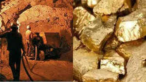 Gsi Said No Discovery Of Gold Deposit Estimated To Be Around 3000 Tonnes