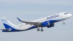 Indigo Shares Are Down 31 Percent From High