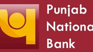 Punjab National Bank Declares Sintex Industries Rs 1203 Crore Loan As Fraud