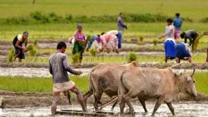 2 மெகா விவசாயத் திட்டங்கள்: பட்ஜெட் 2020